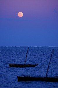 Afryka_Moon_Over_Mombasa