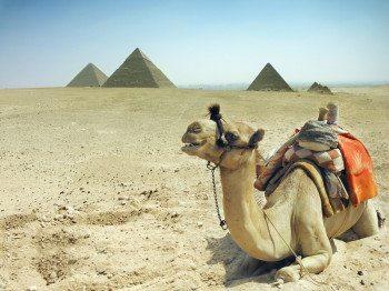 Egipt_wiza1