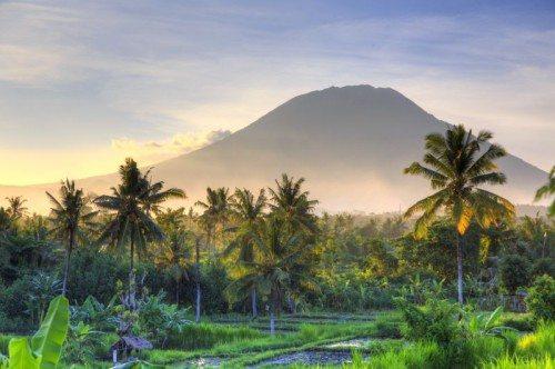 Bali-Emirates