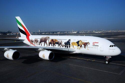 Emirates_dzikia3802