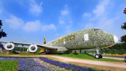 emirates_kwiaty2