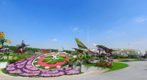 emirates_kwiaty3